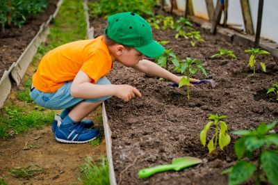 Top plants for children to grow